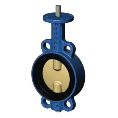 Затворы дисковые поворотные, чугун/нержавеющая сталь, голый шток, Tecofi VP3449-00 цена
