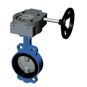 Затворы дисковые поворотные, м/фланц., чугун/нерж. сталь, редуктор, Tecofi VP3449-08 цена